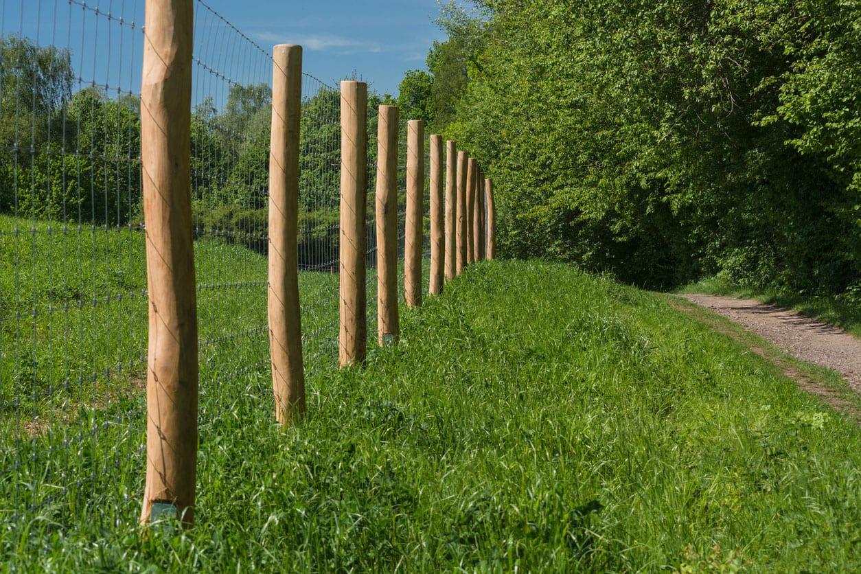 Fence-Posts-3
