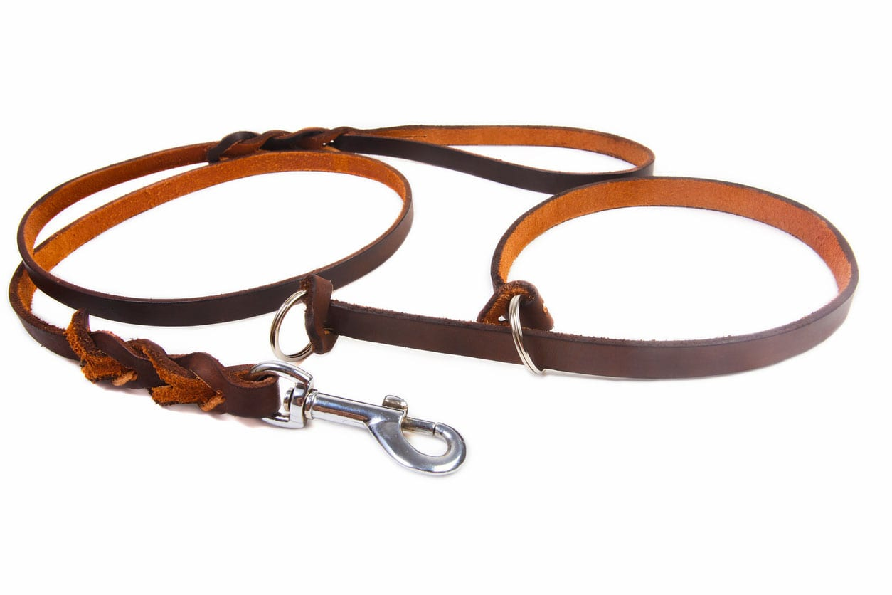 Leather-Collars-harnesses