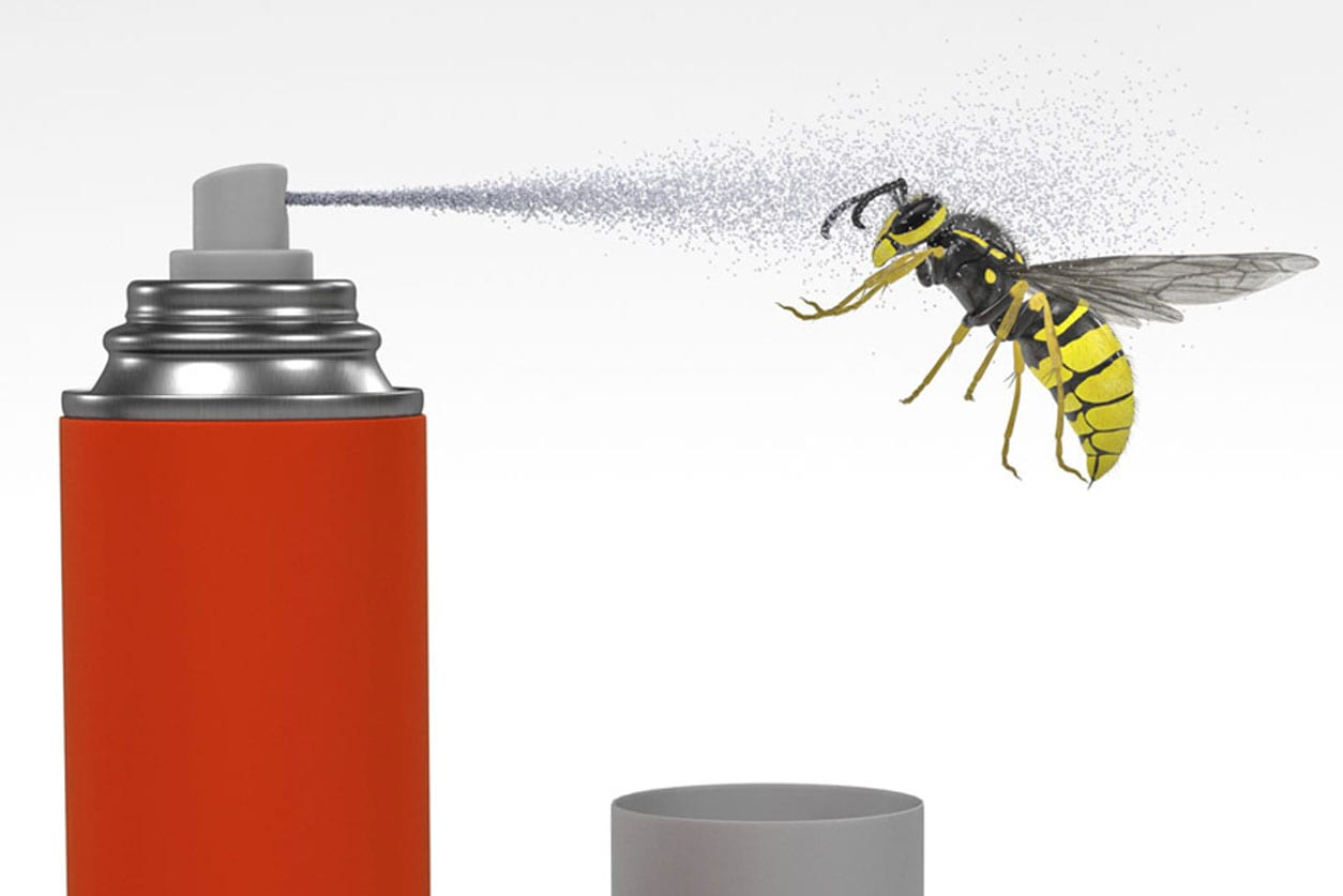 Wasp-Spray