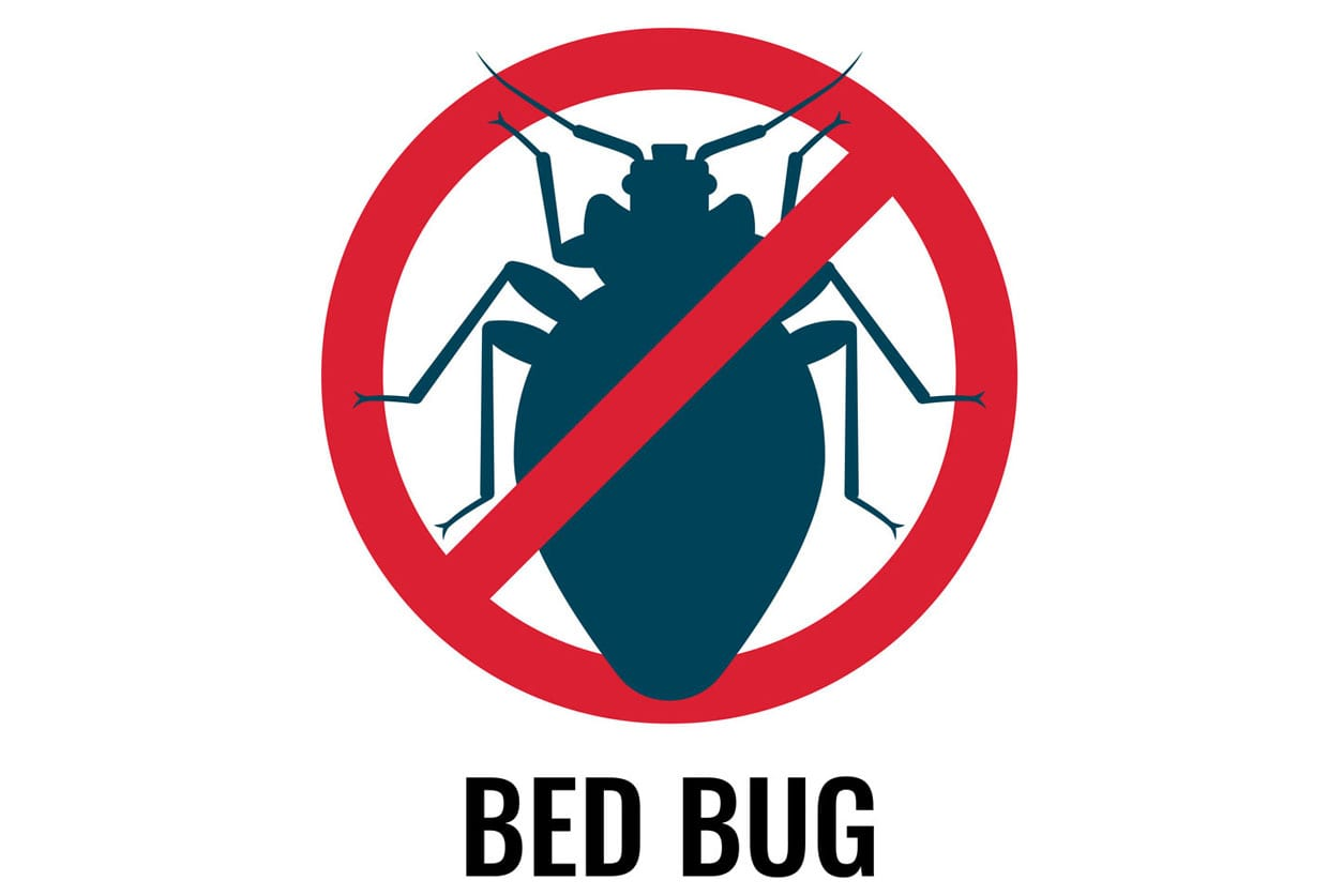 bed-bug-spray-1